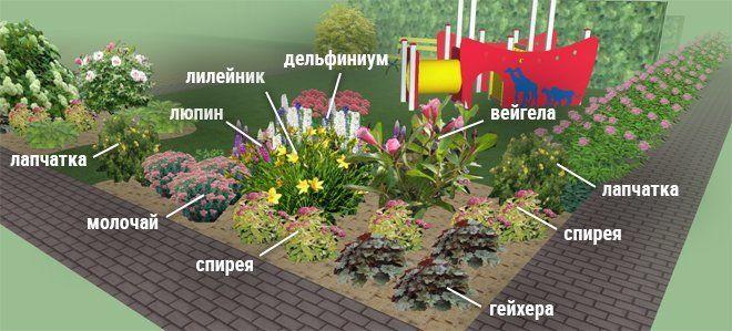 Клумбы непрерывного цветения схемы