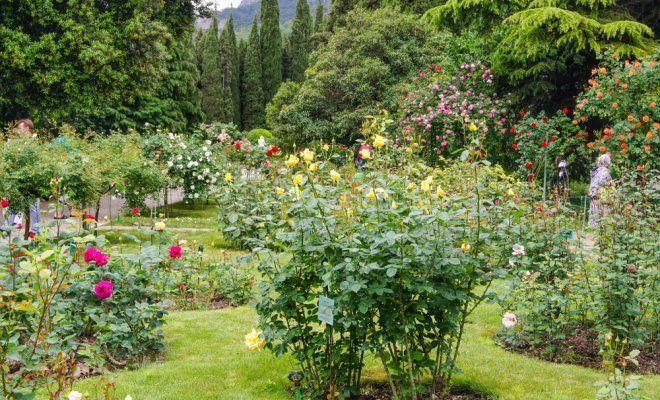 Дизайн сада своими руками: фото и интересные идеи 22