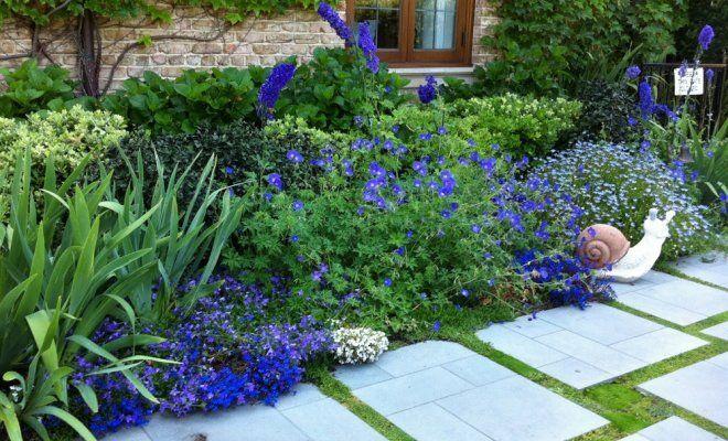 Синий цвет в ландшафтном дизайне