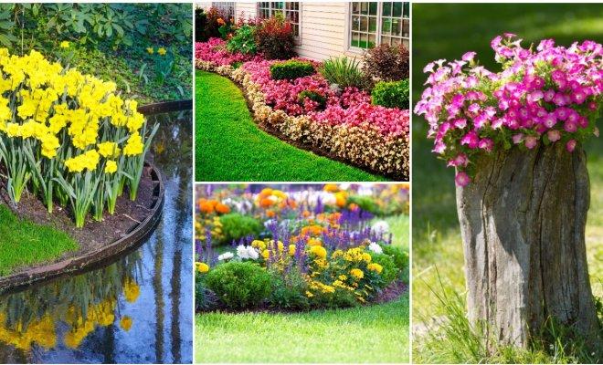 : клумба, цветы, сад, дизайн