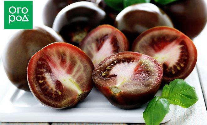 : черные томаты лучшие сорта фото описание