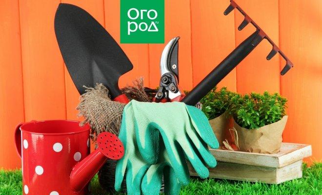 : Garden tools on grass in yard