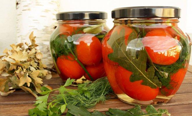 : Малосольные томаты рецепты