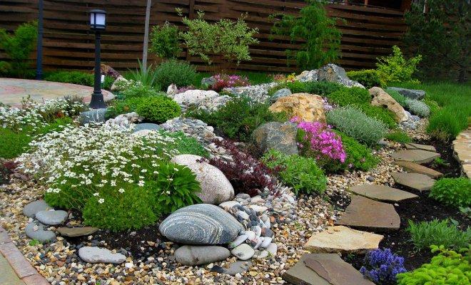 : Как сделать сад камней