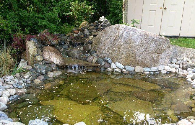 Уложенные на дно камни создают впечатление естественного водоема