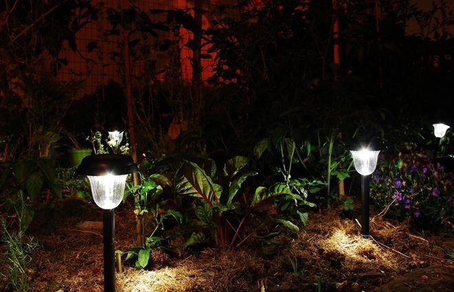 При помощи садовых фонарей можно обозначить контуры водоема