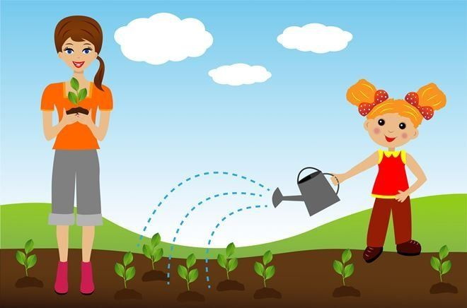 Поливать овощи под корень можно и утром, и вечером