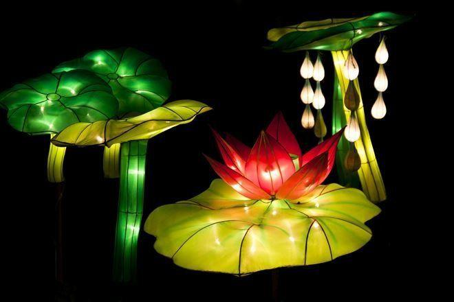 Надводные светильники могут иметь форму растений