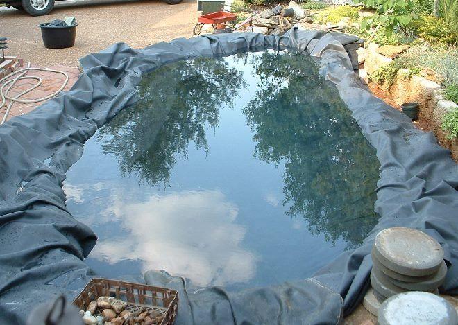 Наполняйте пруд водой постепенно