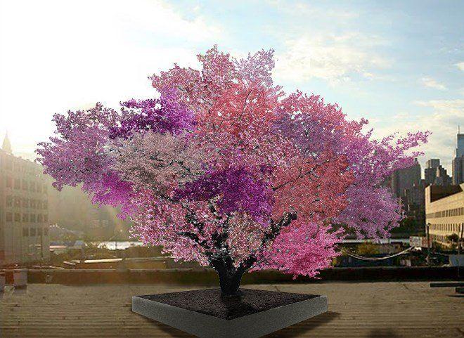 дерево Ван Акена