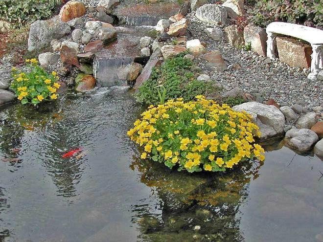 Усаженные цветами острова будто яркие символы вечной весны