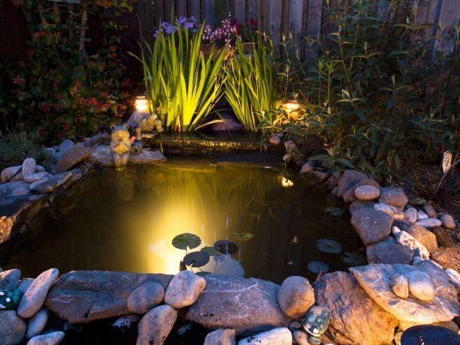 Особое внимание уделяйте подсветке растений