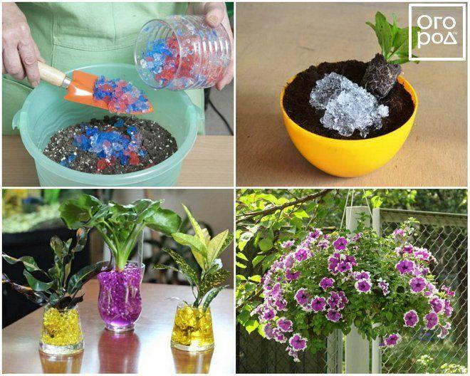 Применение гидрогеля в саду и огороде