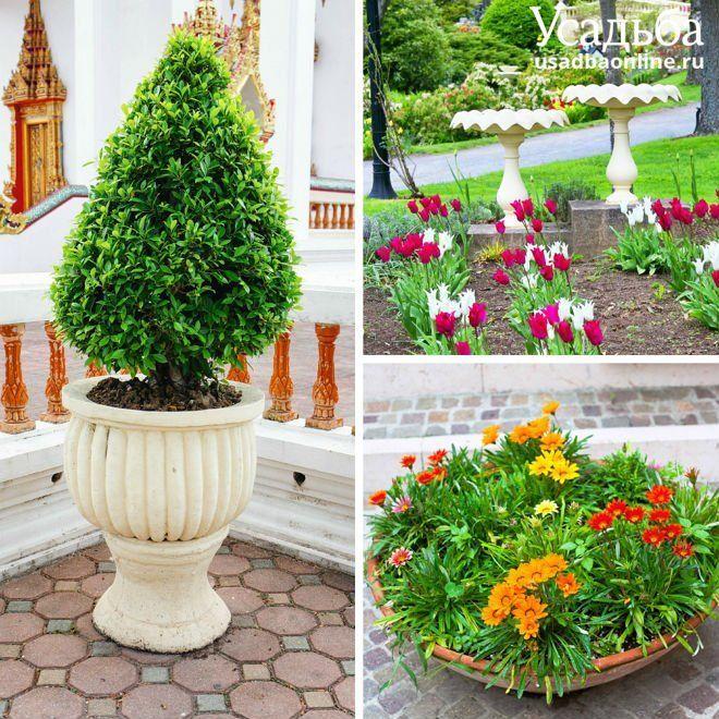 Декоративные элементы в саду