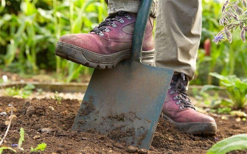 Работа лопатой