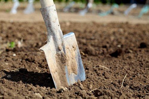 Какие лопаты нужны в саду и огороде?