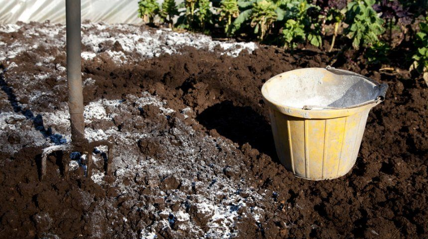 норма внесения извести пушонки в почву