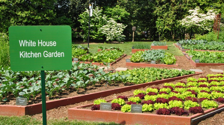 gardendrum.com